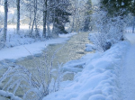 winter-walk1